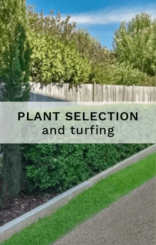 Plant selection and turfing